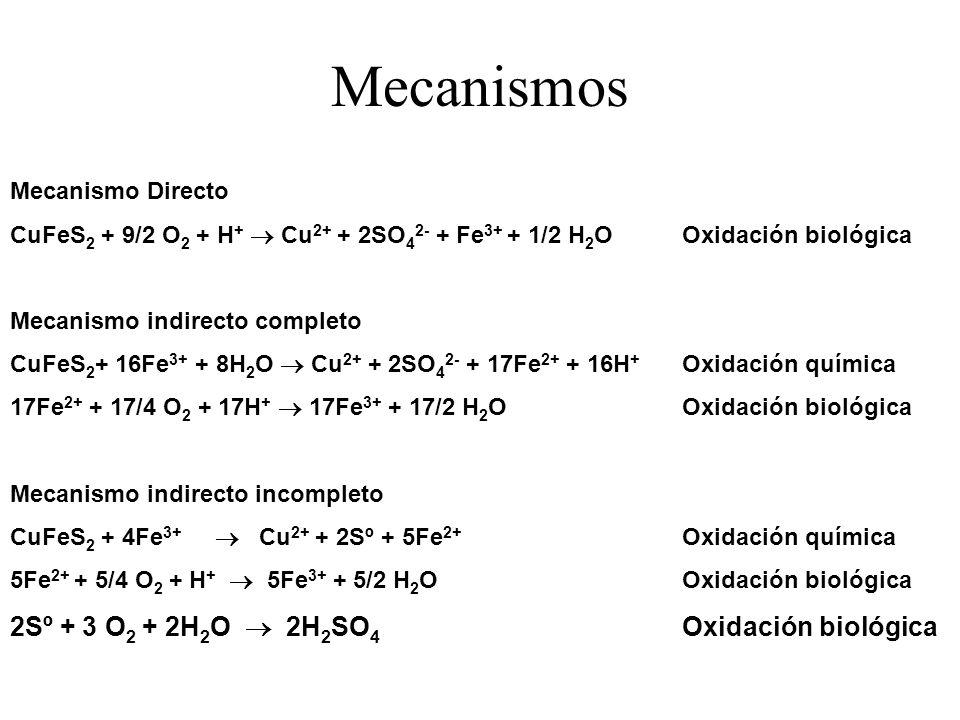Mecanismos Mecanismo Directo CuFeS 2 + 9/2 O 2 + H + Cu 2+ + 2SO 4 2- + Fe 3+ + 1/2 H 2 OOxidación biológica Mecanismo indirecto completo CuFeS 2 + 16
