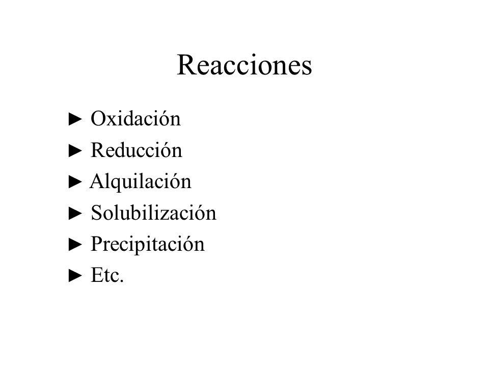 Reacciones Oxidación Reducción Alquilación Solubilización Precipitación Etc.