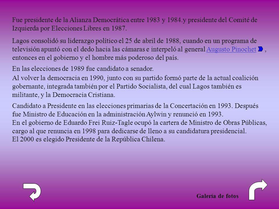 En las elecciones de 1989 fue candidato a senador. Al volver la democracia en 1990, junto con su partido formó parte de la actual coalición gobernante