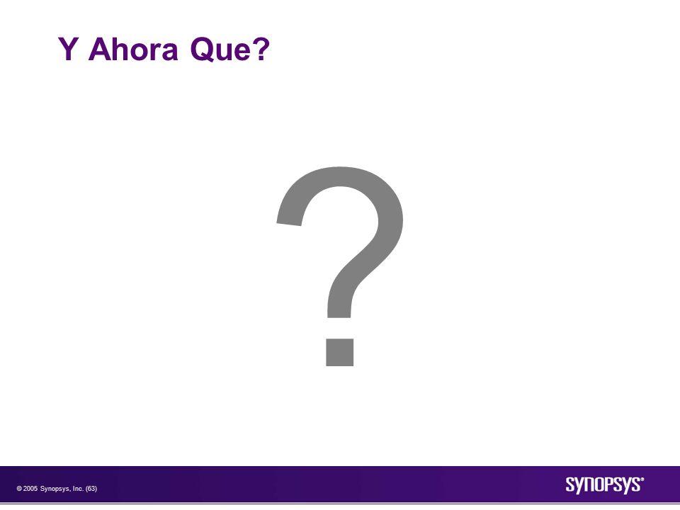 © 2005 Synopsys, Inc. (63) Y Ahora Que? ?