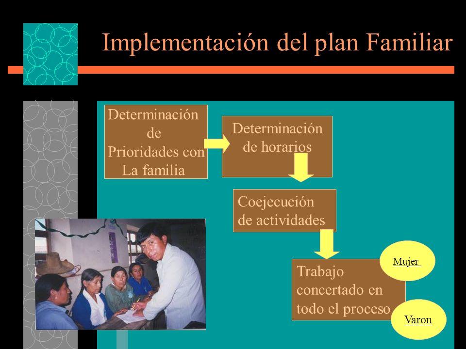 Implementación del plan Familiar Determinación de Prioridades con La familia Determinación de horarios Coejecución de actividades Trabajo concertado en todo el proceso Mujer Varon