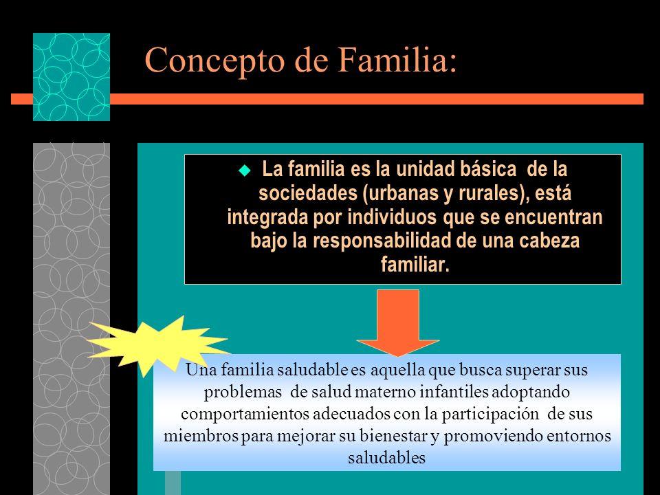 Concepto de Familia: La familia es la unidad básica de la sociedades (urbanas y rurales), está integrada por individuos que se encuentran bajo la responsabilidad de una cabeza familiar.