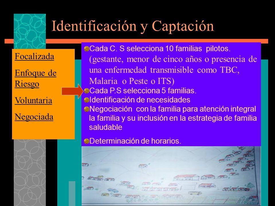 Identificación y Captación Cada C.S selecciona 10 familias pilotos.