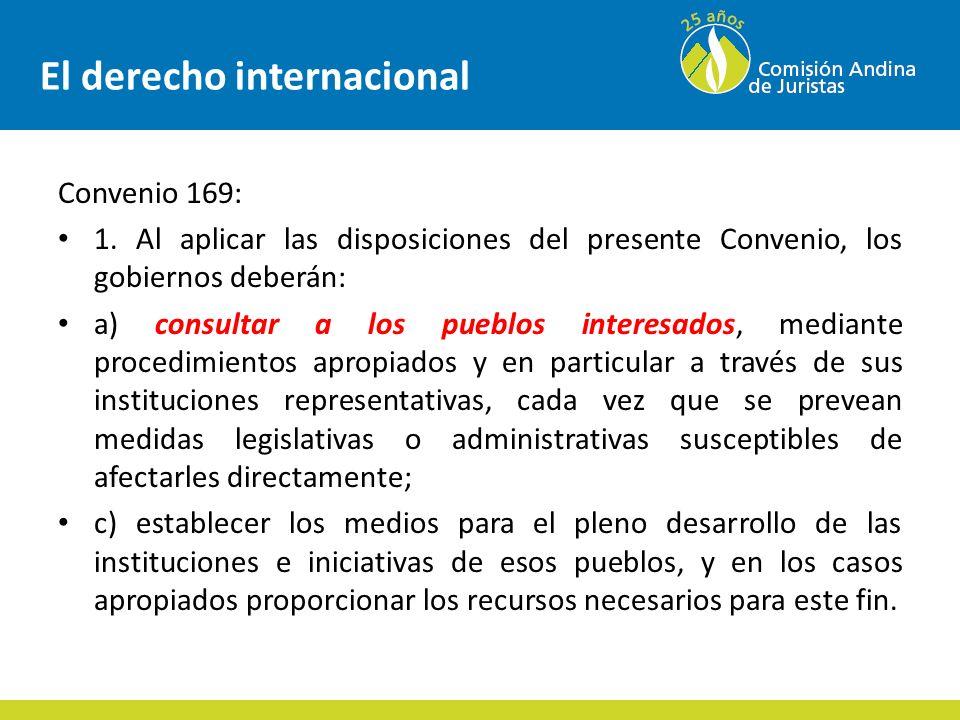 El derecho internacional Convención Trabajadores migratorios Artículo 41 1.