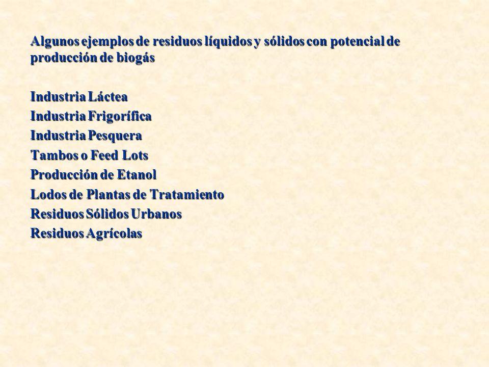 Algunos ejemplos de residuos líquidos y sólidos con potencial de producción de biogás Industria Láctea Industria Frigorífica Industria Pesquera Tambos o Feed Lots Producción de Etanol Lodos de Plantas de Tratamiento Residuos Sólidos Urbanos Residuos Agrícolas