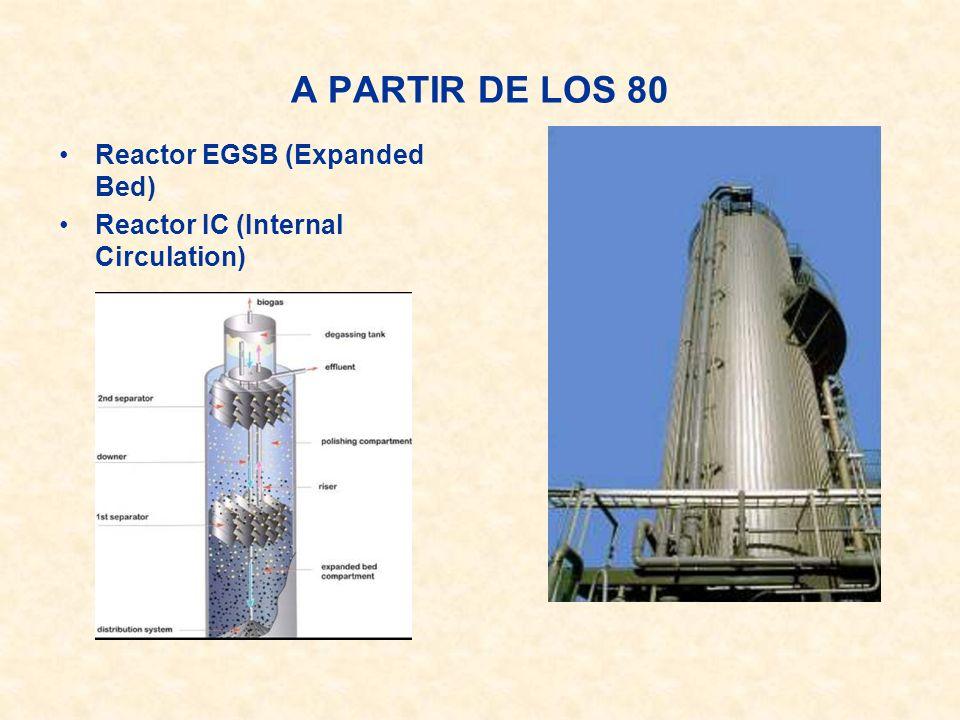 A PARTIR DE LOS 80 Reactor EGSB (Expanded Bed) Reactor IC (Internal Circulation)