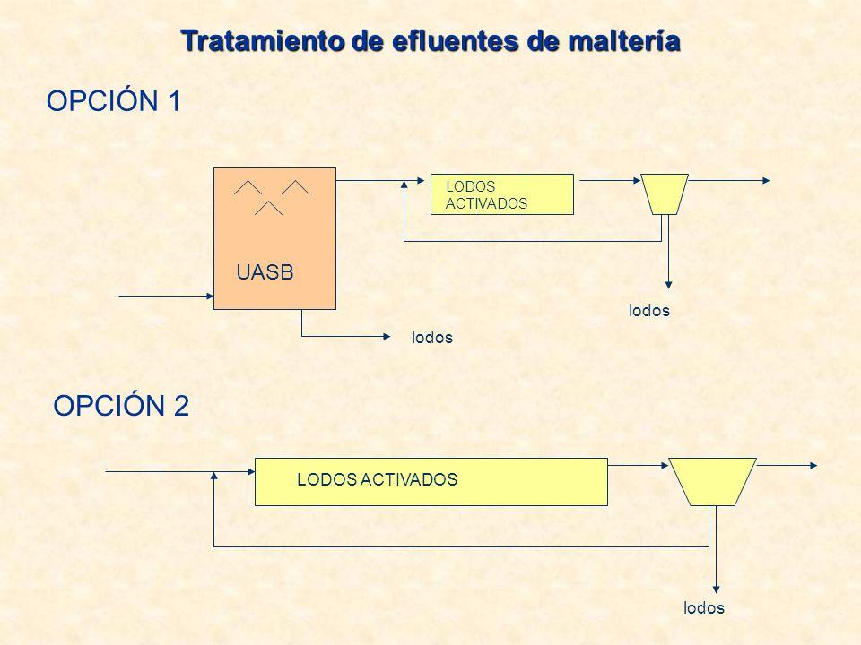OPCIÓN 2 LODOS ACTIVADOS lodos OPCIÓN 1 UASB LODOS ACTIVADOS lodos Tratamiento de efluentes de maltería