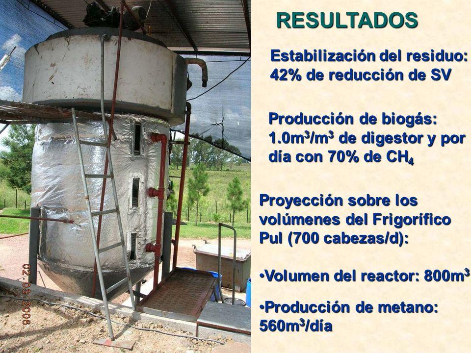 Estabilización del residuo: 42% de reducción de SV Producción de biogás: 1.0m 3 /m 3 de digestor y por día con 70% de CH 4 Proyección sobre los volúmenes del Frigorífico Pul (700 cabezas/d): Volumen del reactor: 800m 3Volumen del reactor: 800m 3 Producción de metano: 560m 3 /díaProducción de metano: 560m 3 /díaRESULTADOS