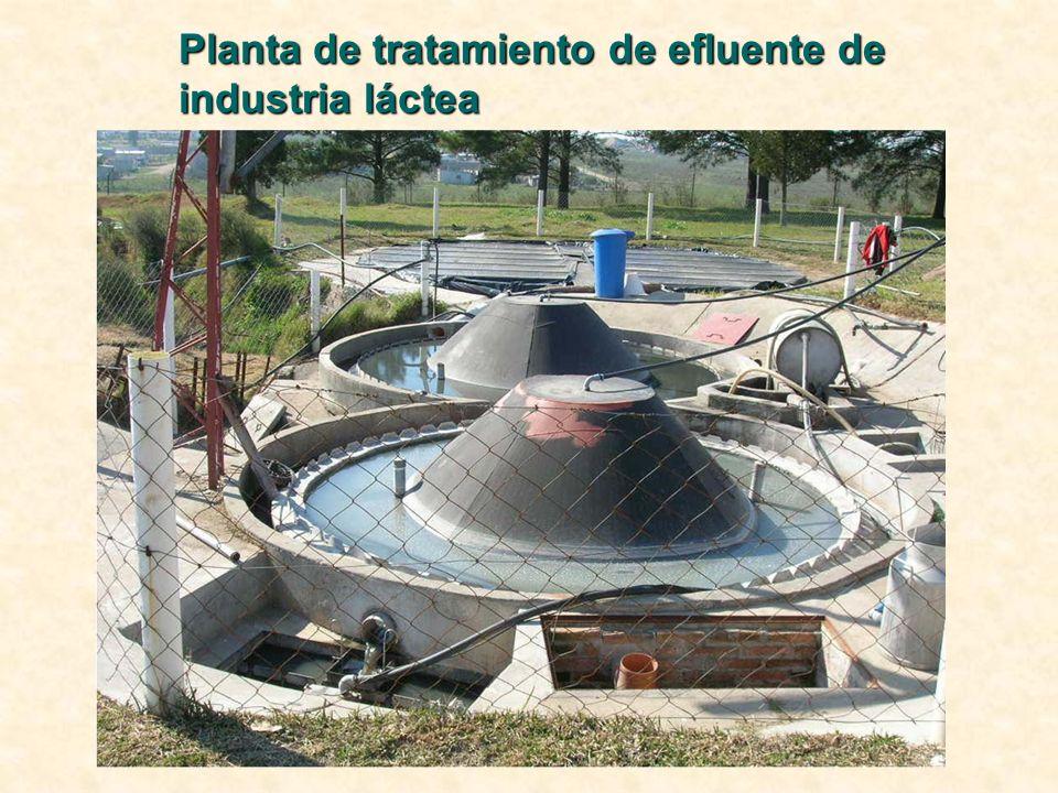 Planta de tratamiento de efluente de industria láctea