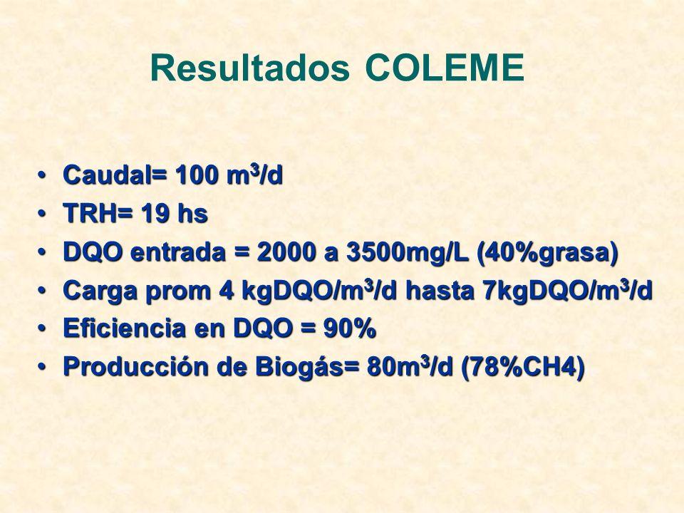 Resultados COLEME Caudal= 100 m 3 /dCaudal= 100 m 3 /d TRH= 19 hsTRH= 19 hs DQO entrada = 2000 a 3500mg/L (40%grasa)DQO entrada = 2000 a 3500mg/L (40%grasa) Carga prom 4 kgDQO/m 3 /d hasta 7kgDQO/m 3 /dCarga prom 4 kgDQO/m 3 /d hasta 7kgDQO/m 3 /d Eficiencia en DQO = 90%Eficiencia en DQO = 90% Producción de Biogás= 80m 3 /d (78%CH4)Producción de Biogás= 80m 3 /d (78%CH4)