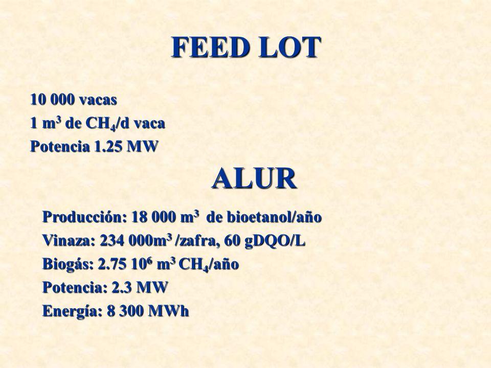 FEED LOT 10 000 vacas 1 m 3 de CH 4 /d vaca Potencia 1.25 MW ALUR Producción: 18 000 m 3 de bioetanol/año Vinaza: 234 000m 3 /zafra, 60 gDQO/L Biogás: 2.75 10 6 m 3 CH 4 /año Potencia: 2.3 MW Energía: 8 300 MWh