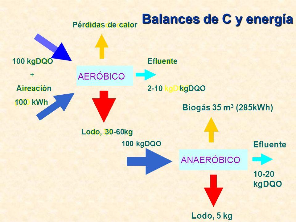 Balances de C y energía ANAERÓBICO 100 kgDQO Lodo, 5 kg Biogás 35 m 3 (285kWh) Efluente 10-20 kgDQO AERÓBICO 100kgDQO + Aireación (100kWh) Lodo, 30--60kg Pérdidas de calor Efluente 2-10kgDQO AERÓBICO 100kgDQO + Aireación 100kWh) Lodo, 30kg Pérdidas de calor Efluente 2-10kgDQO