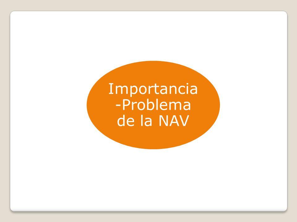 Importancia -Problema de la NAV