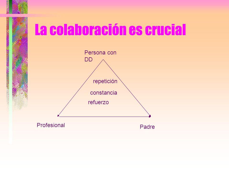 La colaboración es crucial repetición refuerzo constancia Persona con DD Profesional Padre