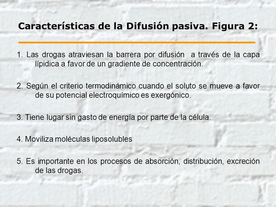 Características de la Difusión pasiva. Figura 2: 1. Las drogas atraviesan la barrera por difusión a través de la capa lípidica a favor de un gradiente