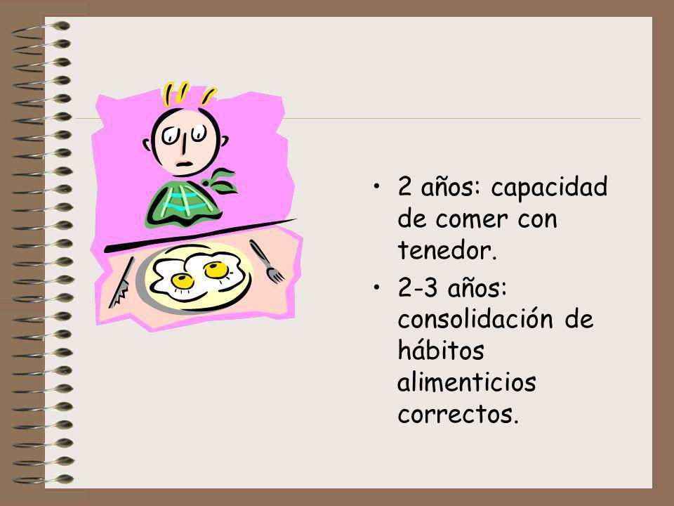 2 años: capacidad de comer con tenedor. 2-3 años: consolidación de hábitos alimenticios correctos.