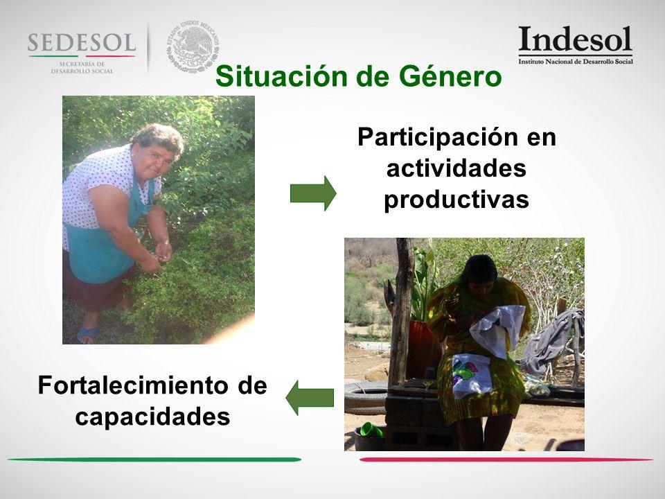 Situación de Género Participación en actividades productivas Fortalecimiento de capacidades
