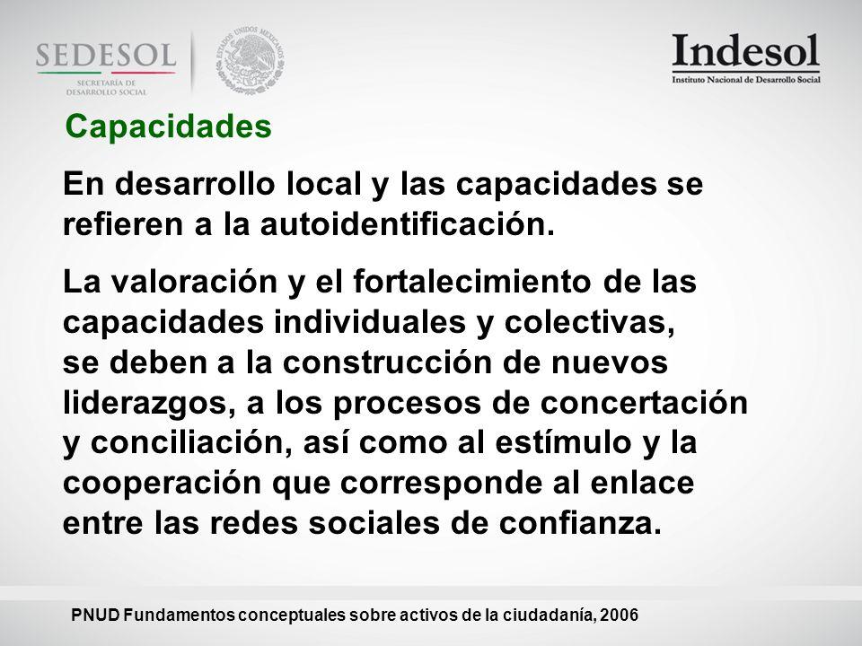 Capacidades En desarrollo local y las capacidades se refieren a la autoidentificación.