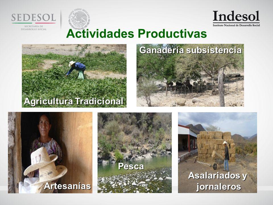 Actividades Productivas Agricultura Tradicional Ganadería subsistencia Artesanías Pesca Asalariados y jornaleros