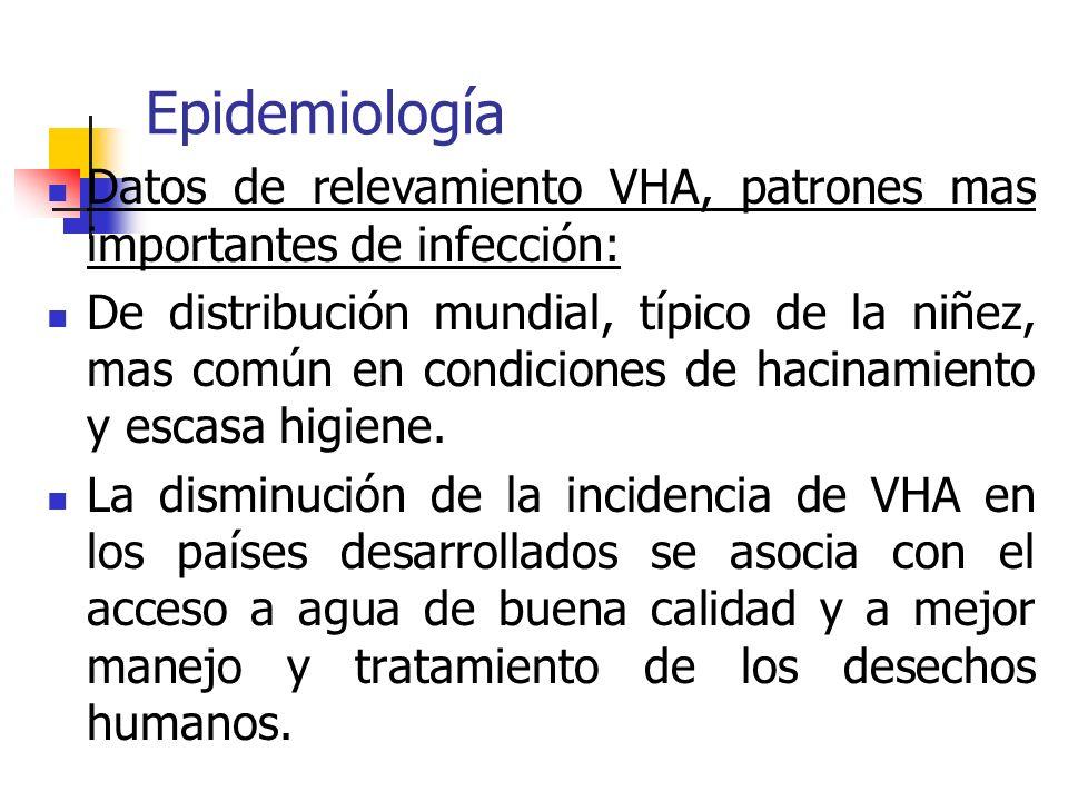 Epidemiología Datos de relevamiento VHA, patrones mas importantes de infección: De distribución mundial, típico de la niñez, mas común en condiciones