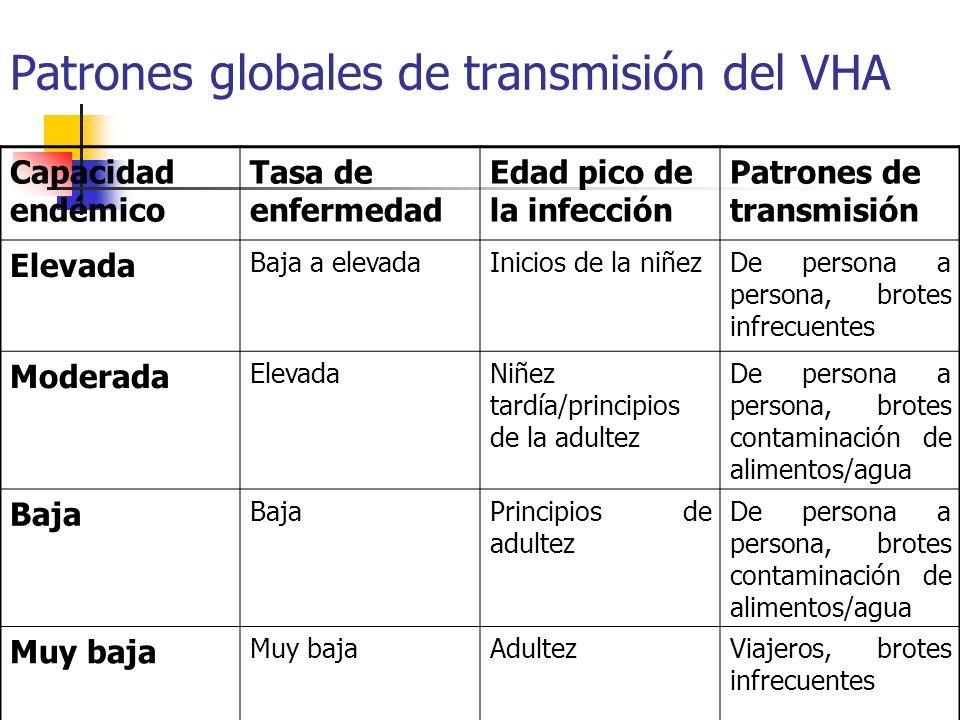 Patrones globales de transmisión del VHA Capacidad endémico Tasa de enfermedad Edad pico de la infección Patrones de transmisión Elevada Baja a elevad