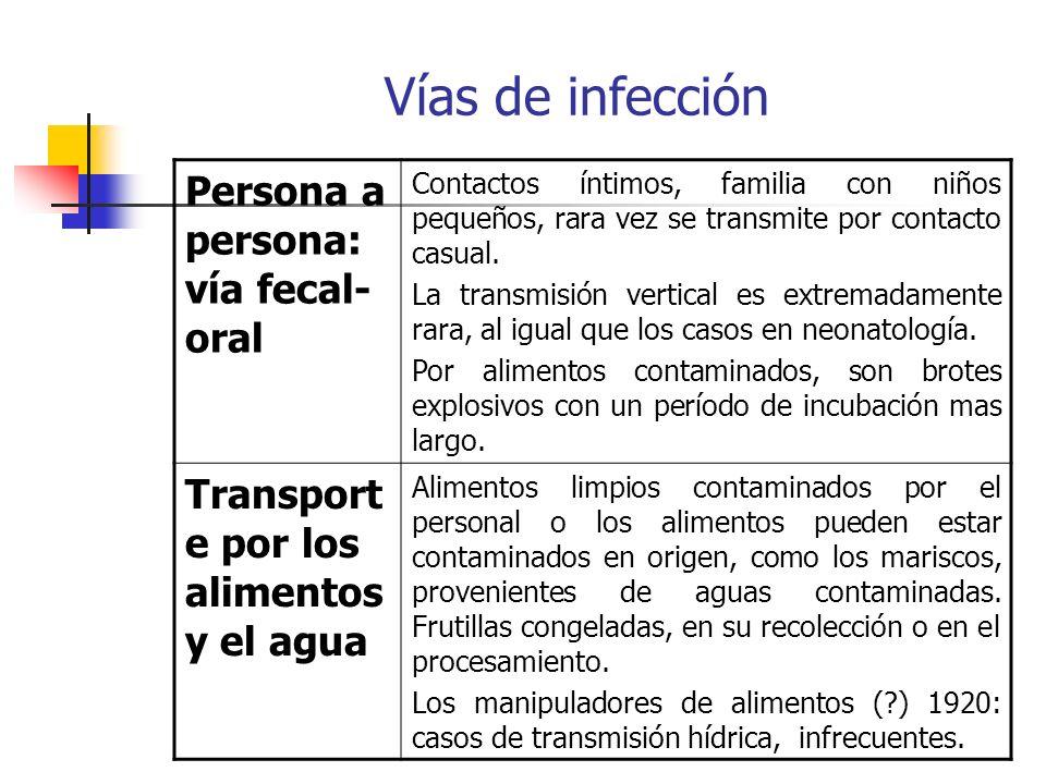 Vías de infección Persona a persona: vía fecal- oral Contactos íntimos, familia con niños pequeños, rara vez se transmite por contacto casual. La tran