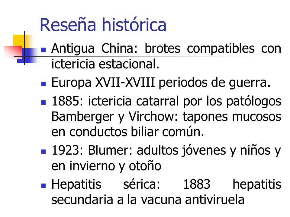 Reseña histórica 2° Guerra Mundial: análisis epidemiológicos hepatitis tanto séricas como infecciosa y en voluntarios: incubación y transmisión 1950: VHA y VHB 1973: Feinstone y col.