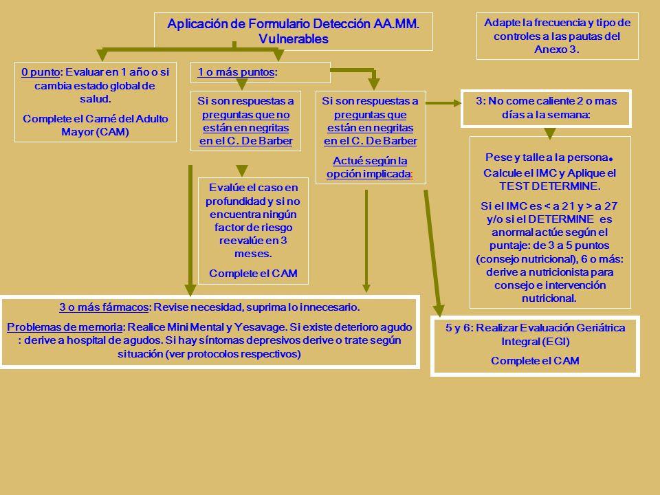 Aplicación de Formulario Detección AA.MM.