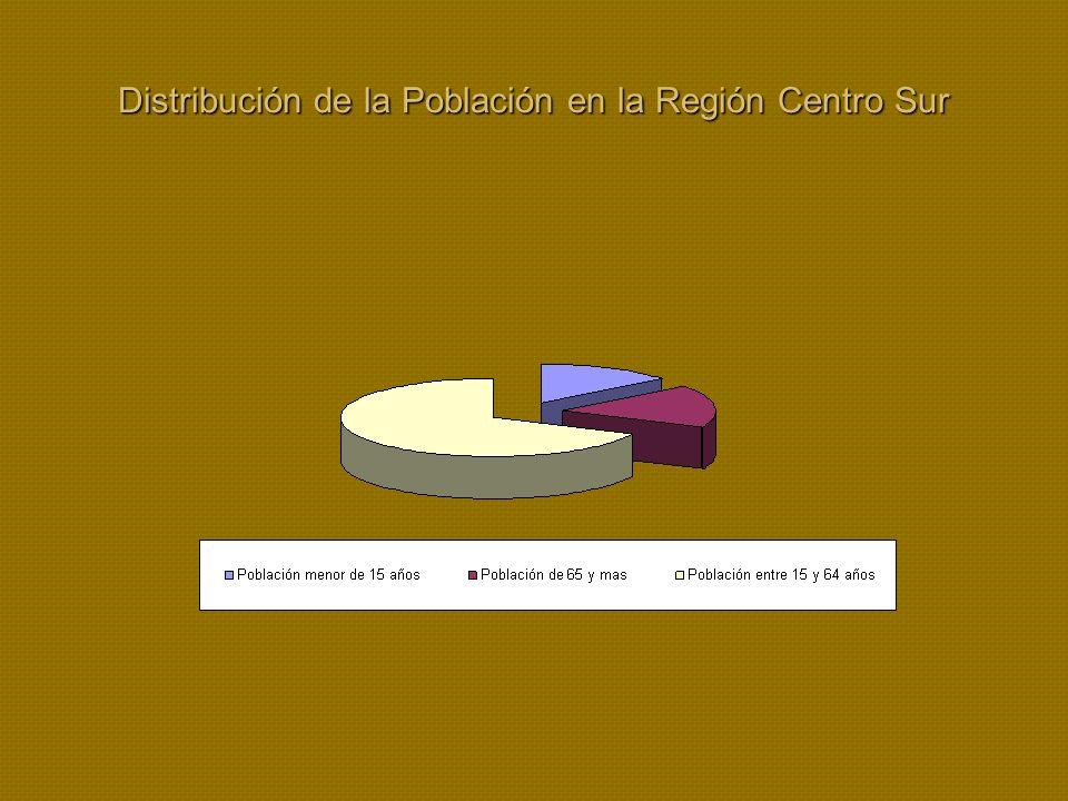 Distribución de la Población en la Región Centro Sur
