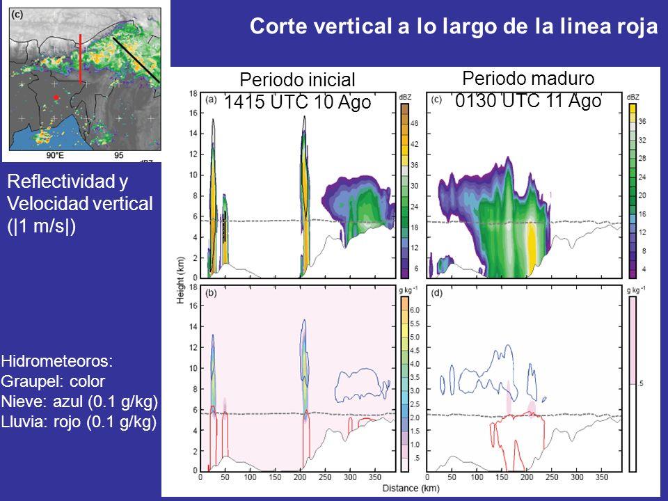 Corte vertical a lo largo de la linea roja Reflectividad y Velocidad vertical (|1 m/s|) Hidrometeoros: Graupel: color Nieve: azul (0.1 g/kg) Lluvia: rojo (0.1 g/kg) Periodo inicial 1415 UTC 10 Ago Periodo maduro 0130 UTC 11 Ago