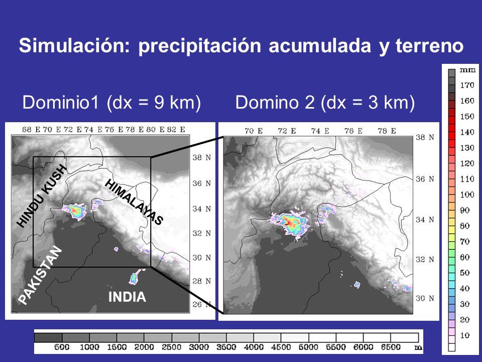 Dominio1 (dx = 9 km)Domino 2 (dx = 3 km) Simulación: precipitación acumulada y terreno INDIA PAKISTAN HIMALAYAS HINDU KUSH