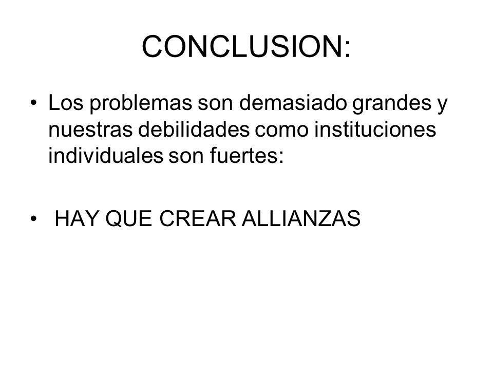 CONCLUSION: Los problemas son demasiado grandes y nuestras debilidades como instituciones individuales son fuertes: HAY QUE CREAR ALLIANZAS