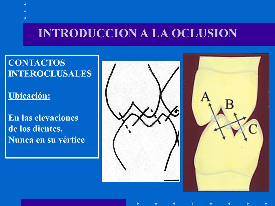 INTRODUCCION A LA OCLUSION CONTACTOS INTEROCLUSALES Ubicación: En las elevaciones de los dientes.