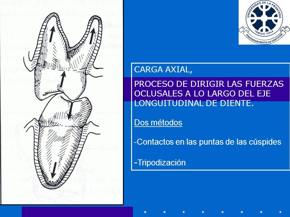 CARGA AXIAL, PROCESO DE DIRIGIR LAS FUERZAS OCLUSALES A LO LARGO DEL EJE LONGUITUDINAL DE DIENTE.