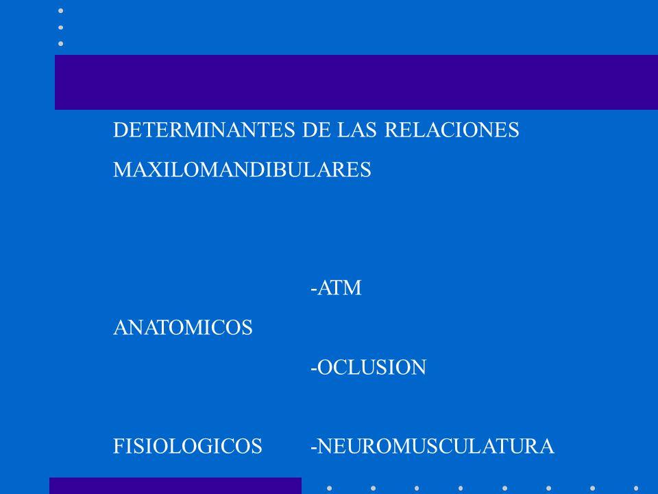 DETERMINANTES DE LAS RELACIONES MAXILOMANDIBULARES -ATM ANATOMICOS -OCLUSION FISIOLOGICOS-NEUROMUSCULATURA