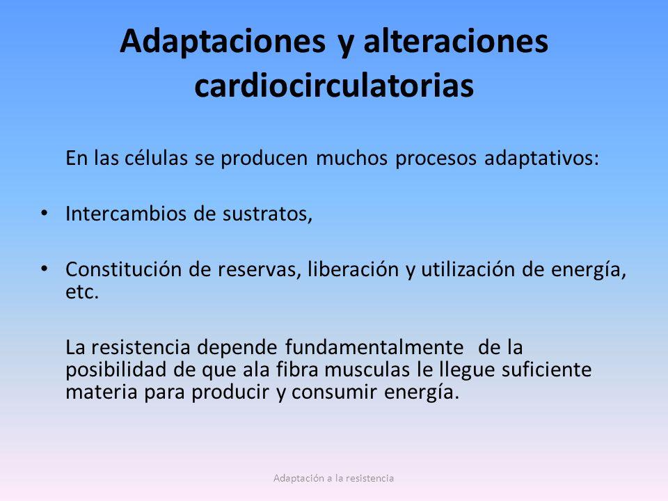 Adaptaciones y alteraciones cardiocirculatorias En las células se producen muchos procesos adaptativos: Intercambios de sustratos, Constitución de reservas, liberación y utilización de energía, etc.