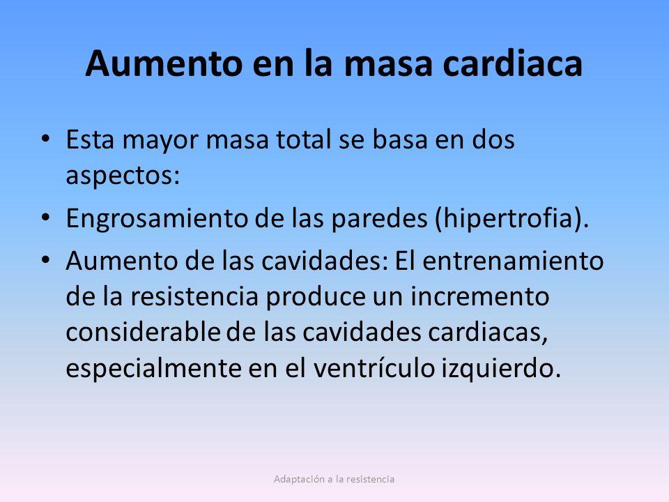 Aumento en la masa cardiaca Esta mayor masa total se basa en dos aspectos: Engrosamiento de las paredes (hipertrofia).
