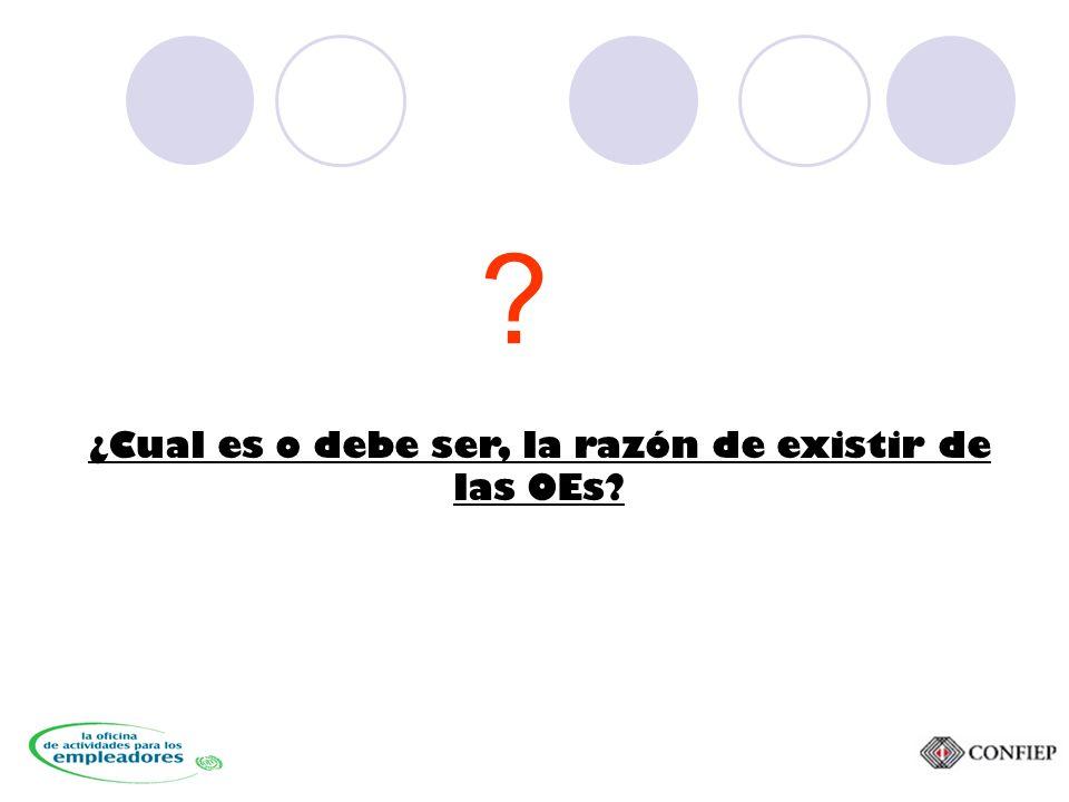 ¿Cual es o debe ser, la razón de existir de las OEs