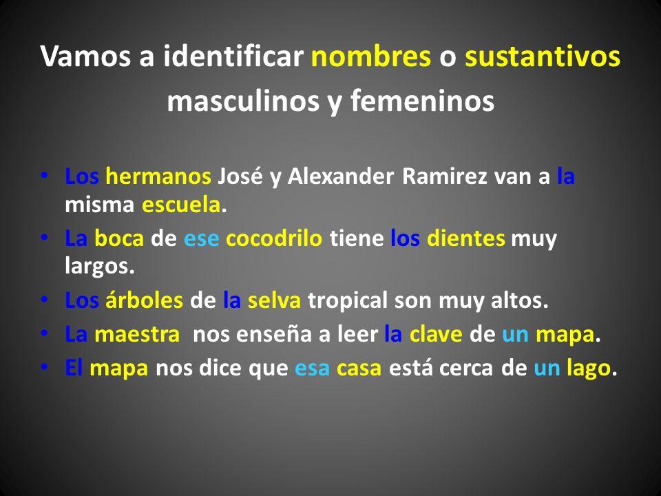 Vamos a identificar nombres o sustantivos masculinos y femeninos Los hermanos José y Alexander Ramirez van a la misma escuela. La boca de ese cocodril