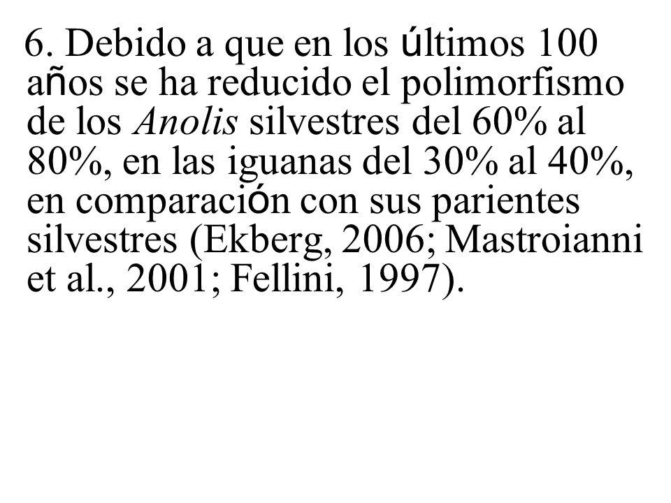 6. Debido a que en los ú ltimos 100 a ñ os se ha reducido el polimorfismo de los Anolis silvestres del 60% al 80%, en las iguanas del 30% al 40%, en c