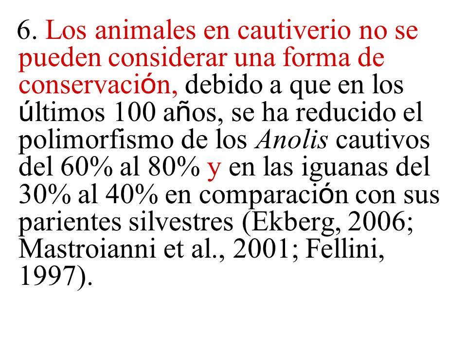 6. Los animales en cautiverio no se pueden considerar una forma de conservaci ó n, debido a que en los ú ltimos 100 a ñ os, se ha reducido el polimorf