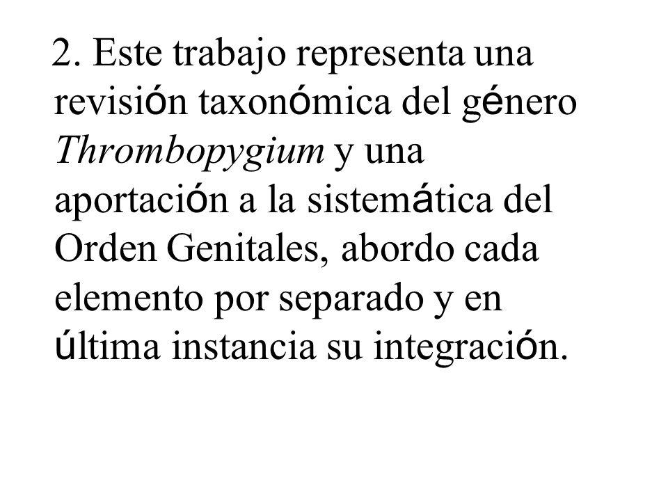 2. Este trabajo representa una revisi ó n taxon ó mica del g é nero Thrombopygium y una aportaci ó n a la sistem á tica del Orden Genitales, abordo ca