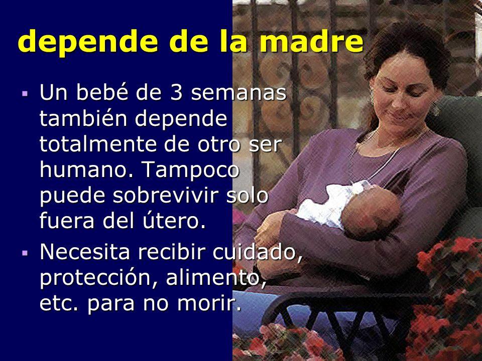 depende de la madre Un bebé de 3 semanas también depende totalmente de otro ser humano. Tampoco puede sobrevivir solo fuera del útero. Un bebé de 3 se