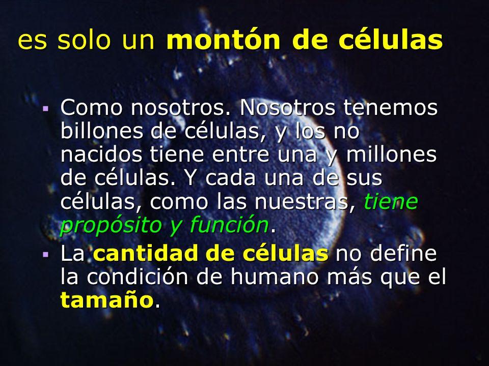 es solo un montón de células Como nosotros. Nosotros tenemos billones de células, y los no nacidos tiene entre una y millones de células. Y cada una d