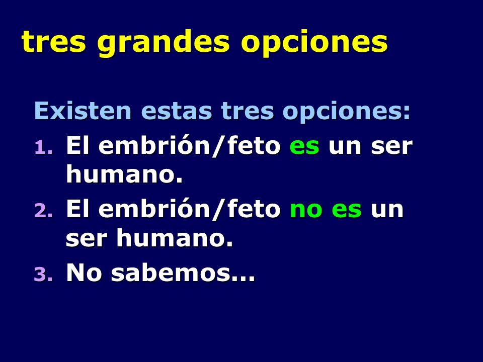 tres grandes opciones Existen estas tres opciones: 1. El embrión/feto es un ser humano. 2. El embrión/feto no es un ser humano. 3. No sabemos...