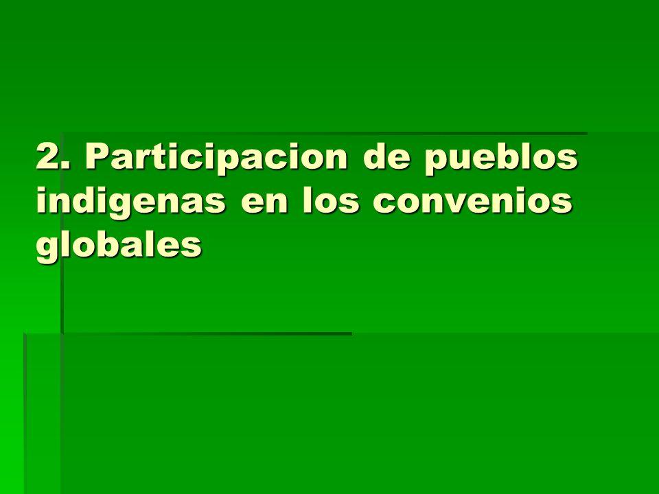 2. Participacion de pueblos indigenas en los convenios globales