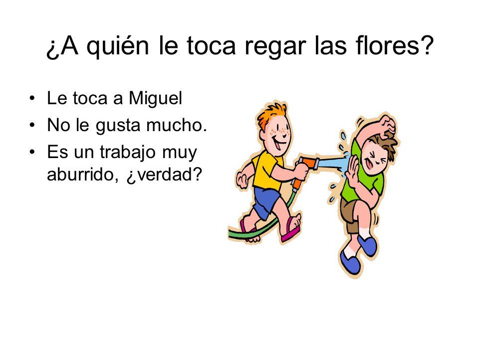 ¿A quién le toca regar las flores.Le toca a Miguel No le gusta mucho.