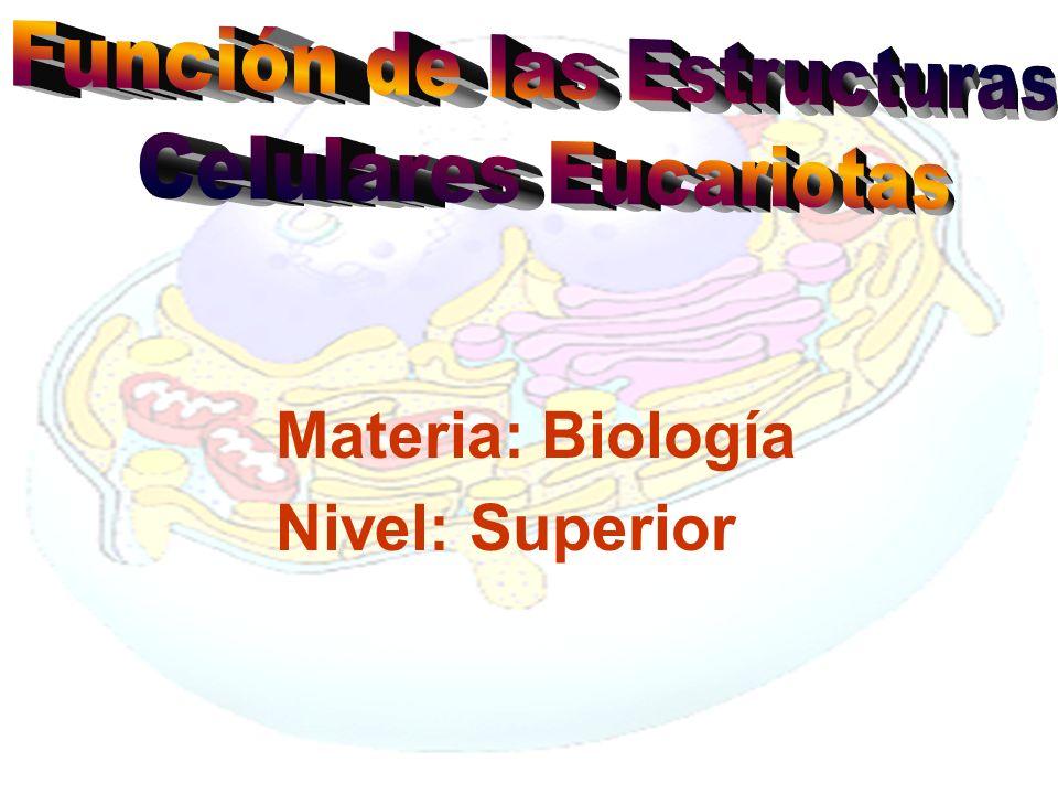 Materia: Biología Nivel: Superior