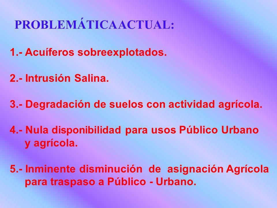 1.- Acuíferos sobreexplotados. 2.- Intrusión Salina. 3.- Degradación de suelos con actividad agrícola. 4.- Nula d isponibilidad para usos Público Urba