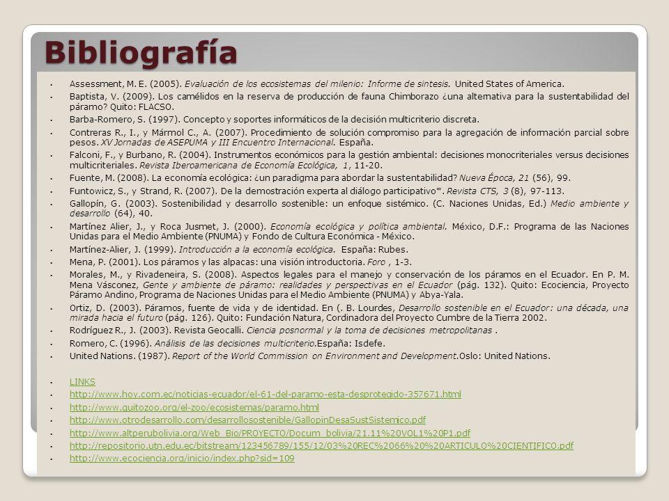 Bibliografía Assessment, M.E. (2005).
